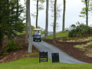Golf buggy hire Newcastle