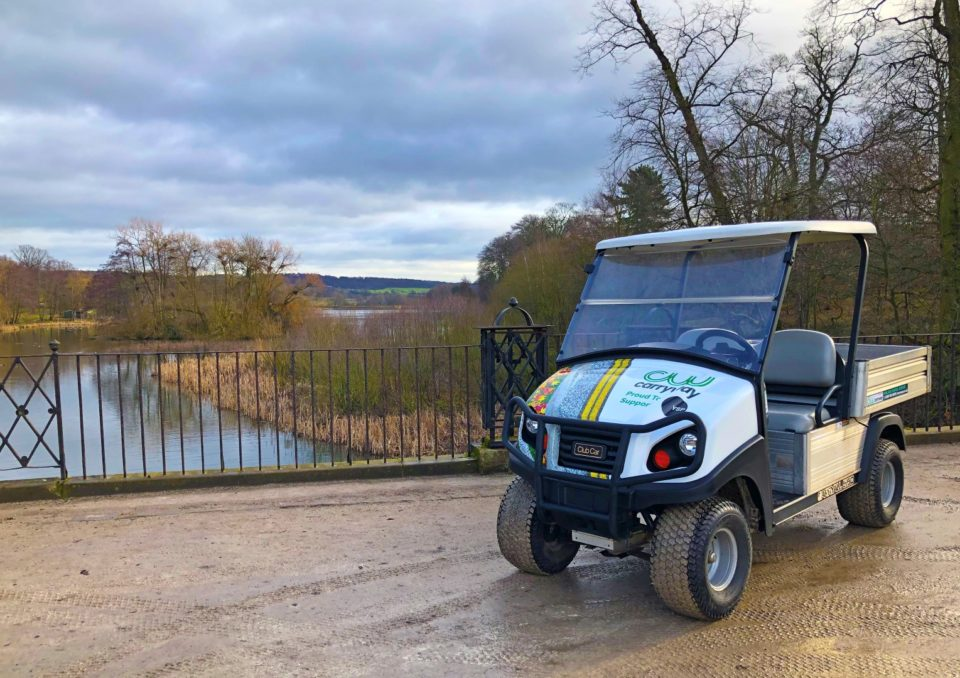 Electric Utility Buggy For Parks