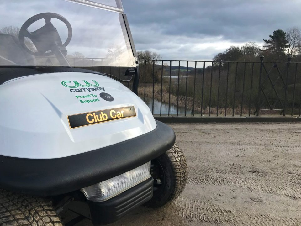 Electric Buggy Hire